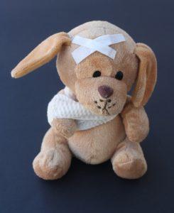 teddy-242831_960_720