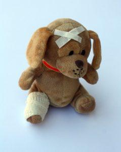 teddy-242838_960_720